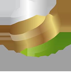 Median Agency